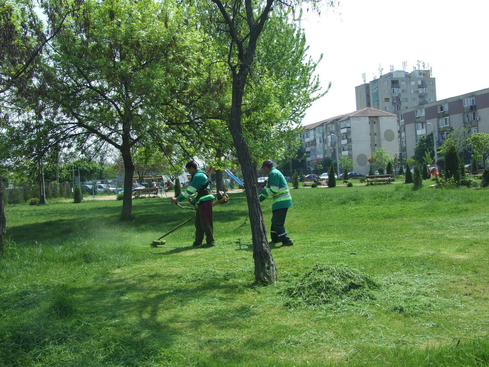Amenajare și întreținere de spații verzi